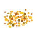 Recette pollen endives kiwis