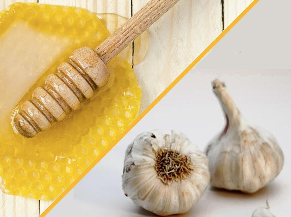 Bienfais miel et ail