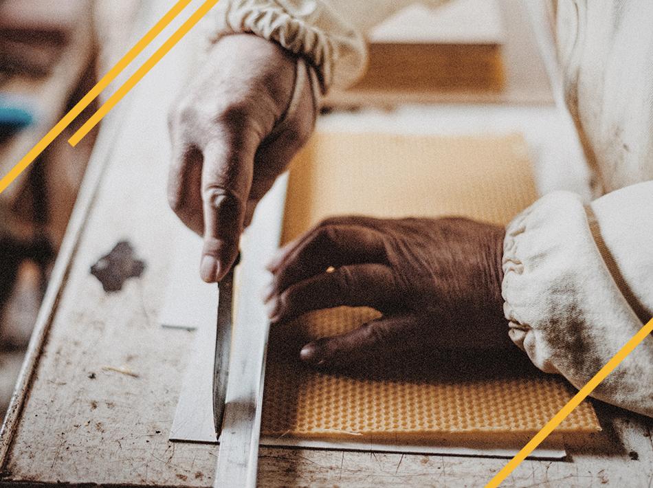 Cire gaufrée pour la construction des cadres d'abeilles